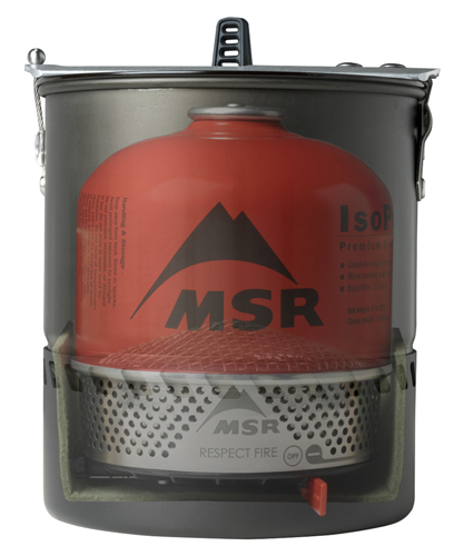 Kuchenka MSR Reactor