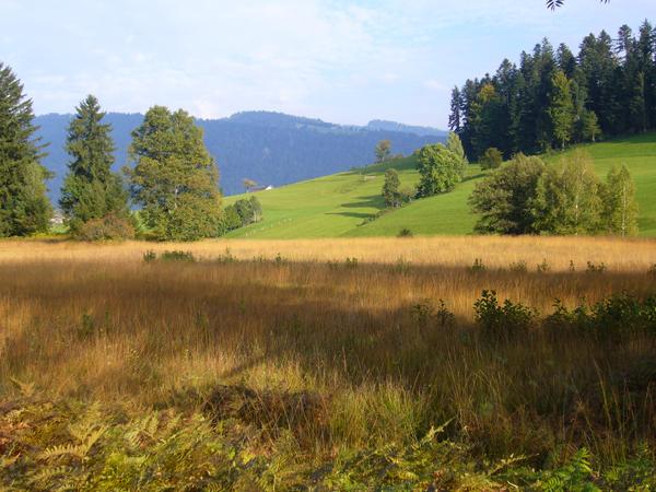 Vorarlberg - bagno w Krumbach (fot. Steurer Ruth)