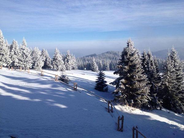 wintercamp2014-5