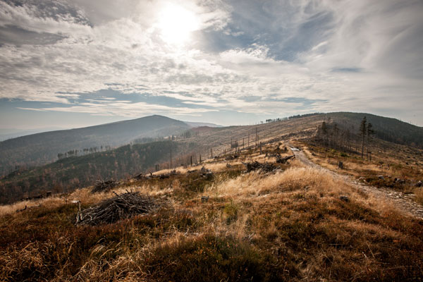 Sceneria Beskid Adventure Run (fot. Bikelife)