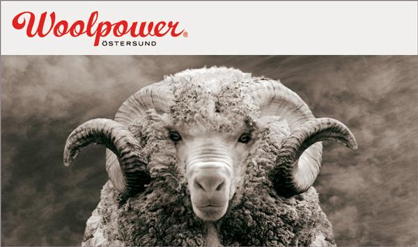 woolpower_ram