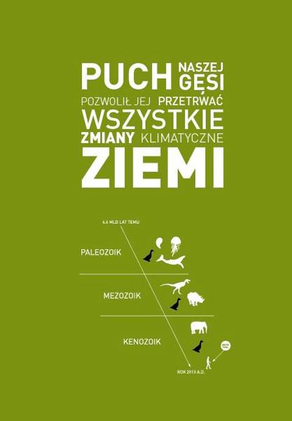 Źródło: Pajak