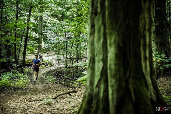 Forest Run w Wielkopolskim Parku Narodowym (fot. G. Lisowski)