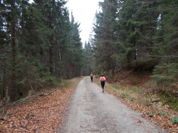 Trasa Letniego Biegu Piastów (fot. Leszek Kosiorowski)