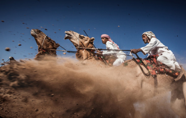 Ahmed Al Toqi / National Geographic Traveler Photo Contest, Camel Ardah