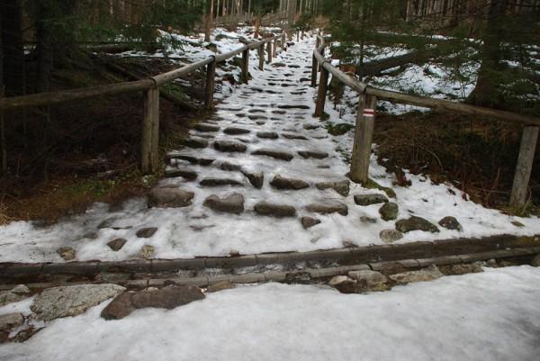Warunki w Tatrach są bardzo trudne, szlaki są pokryte lodem (fot. TPN)