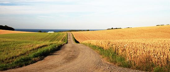 Polska oferuje wiele urodziwych miejsc do aktywnego wypoczynku na łonie natury (fot. MT Targi)