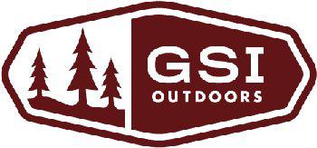 gsi_logo
