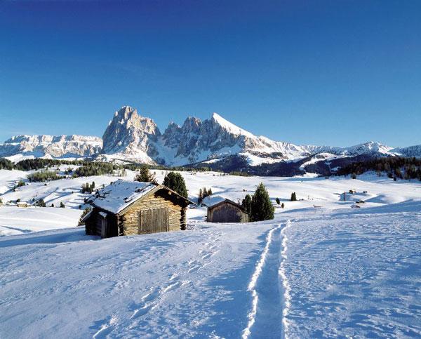 Alpe di Siusi (Clemens Zahn)
