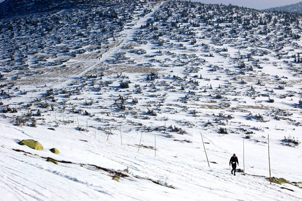 Pierwszy Zimowy Ultramaraton Karkonoski im. Tomka Kowalskiego (fot. organizatorów)