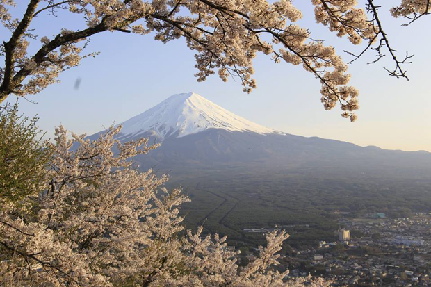Mt. Fuji (fot. Maciej Sokołowski)