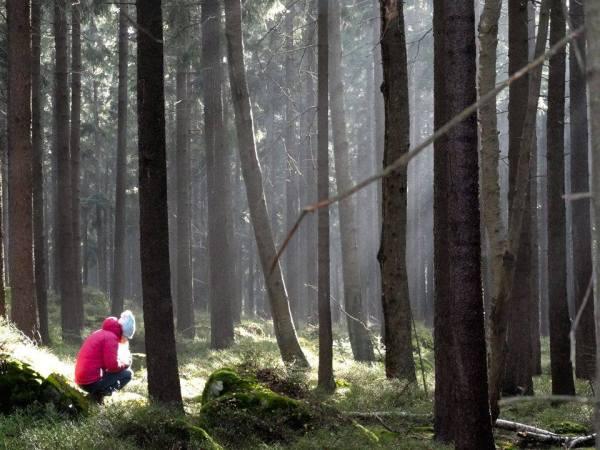 Klimaty Kamiennej (fot. arch. Sylwia Buczek)