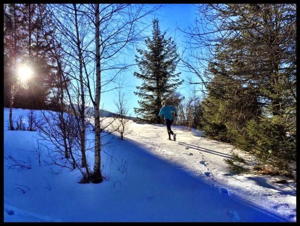 bieg-snieznej-pantery-2015-zawoja3