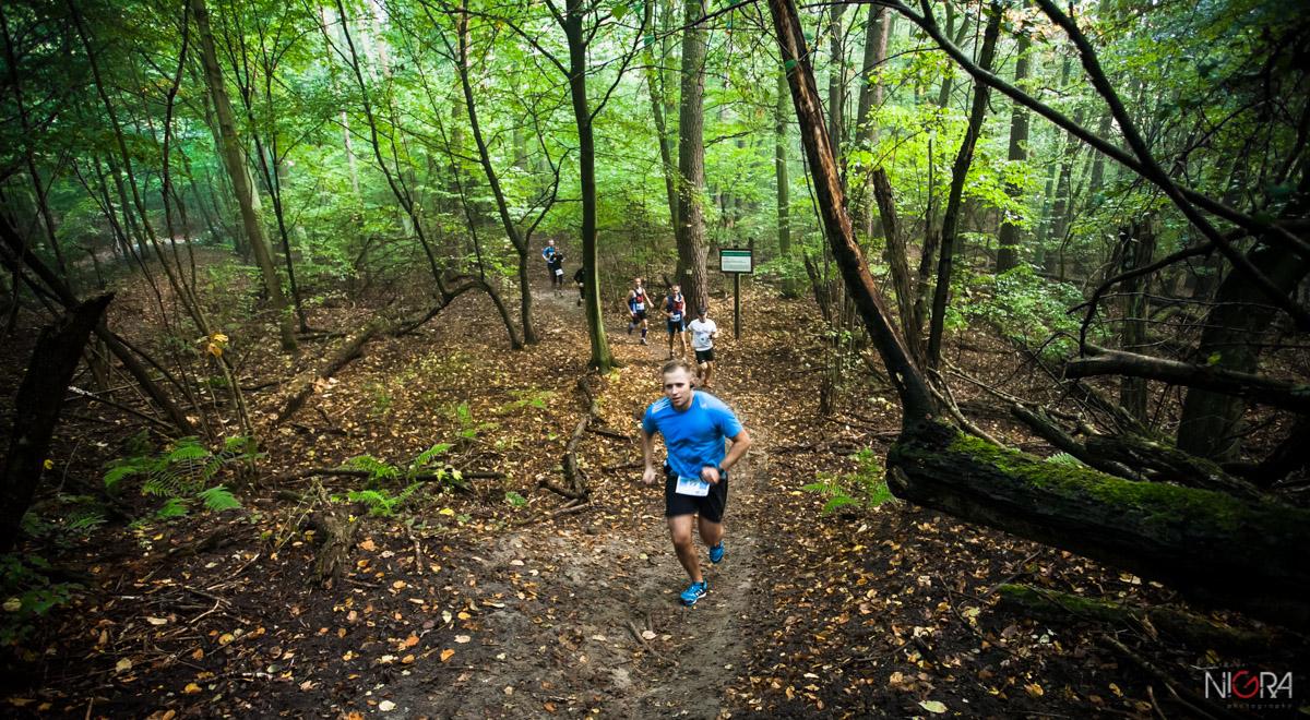 Forest Run (fot. G. Lisowski)