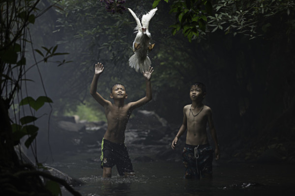 Sarah Wouters / National Geographic Traveler Photo Contest, Catching a Duck