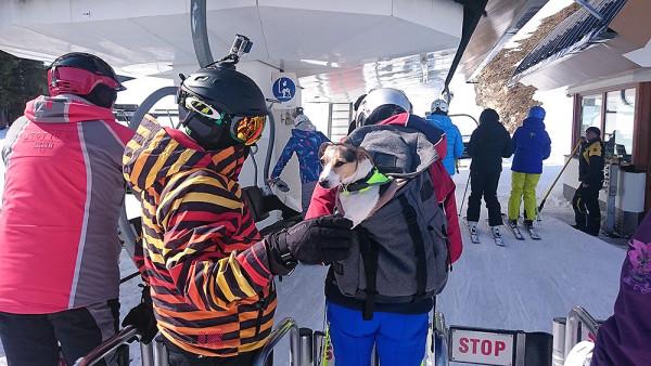 Z atrakcji Zillertal Arena korzystają nie tylko narciarze ;) (fot. outdoormagazyn.pl)
