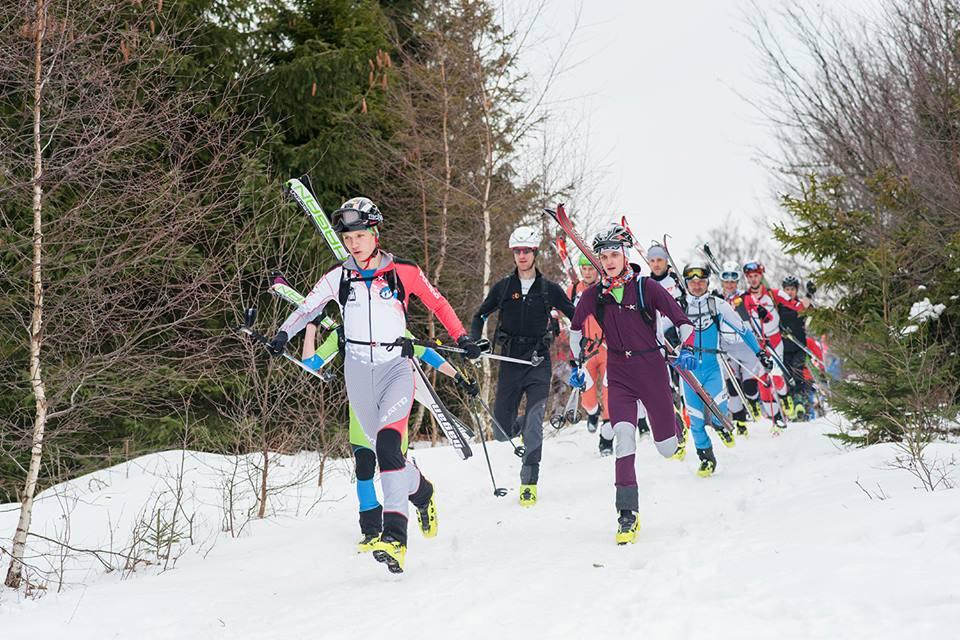XI Polar Sport Skitour