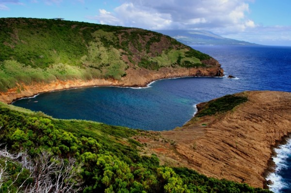 Parque Natural do Faial (fot. Nuno Rodrigues)