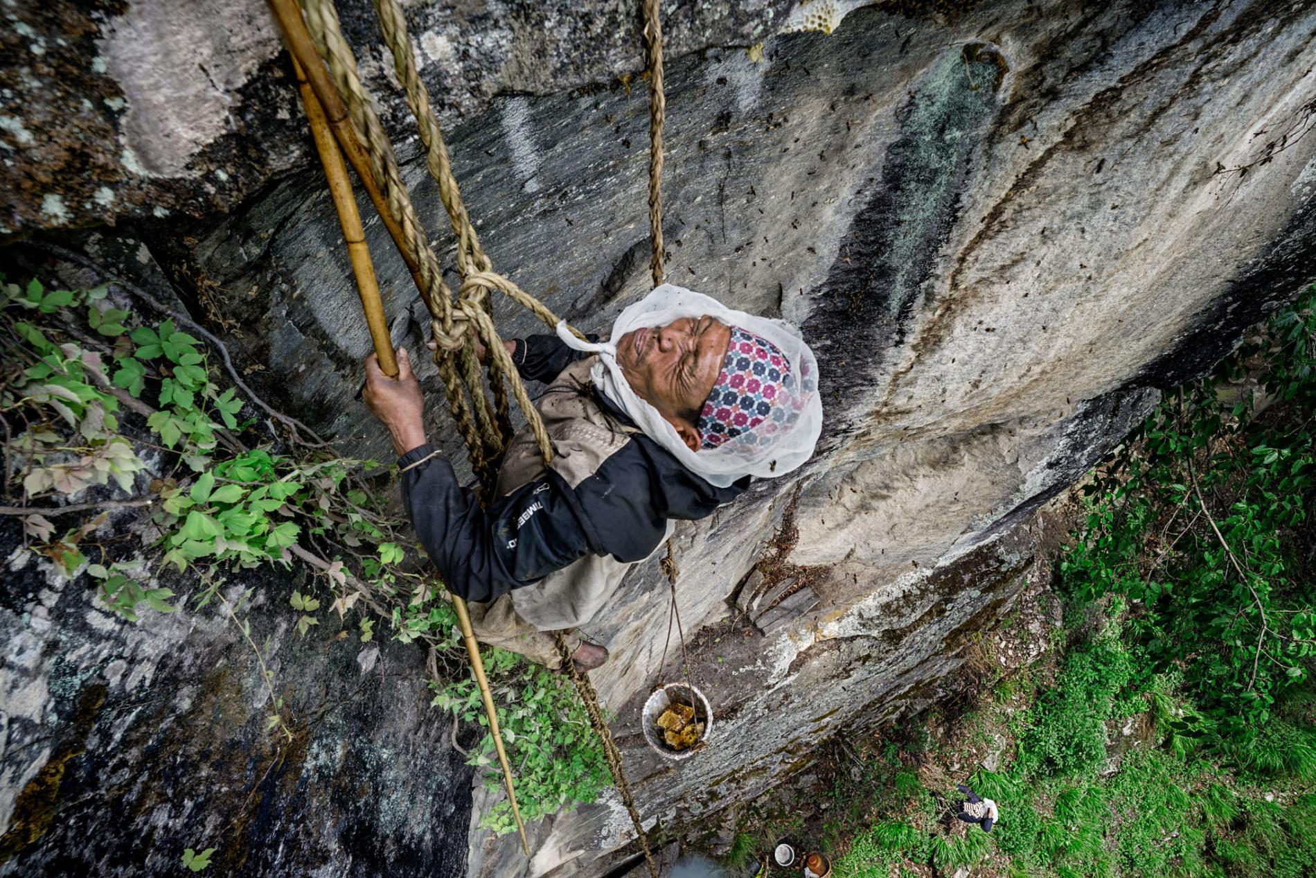 Łowcy miodu z Kulung (fot. Renan Ozturk / National Geographic)
