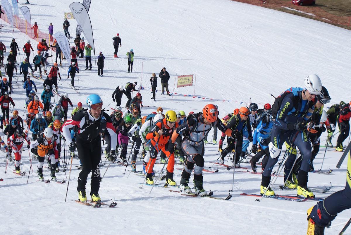 Polar Sport Skitour im. Basi German