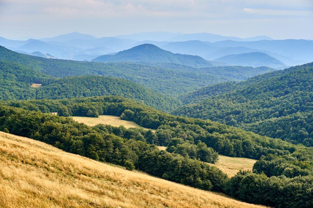 Jeśli kiedykolwiek dostaliście pocztówkę od znajomych z Bieszczad, to najprawdopodobniej przedstawiała ona właśnie krajobraz Połoniny Wetlińskiej (fot. Materiały marki Merrell)