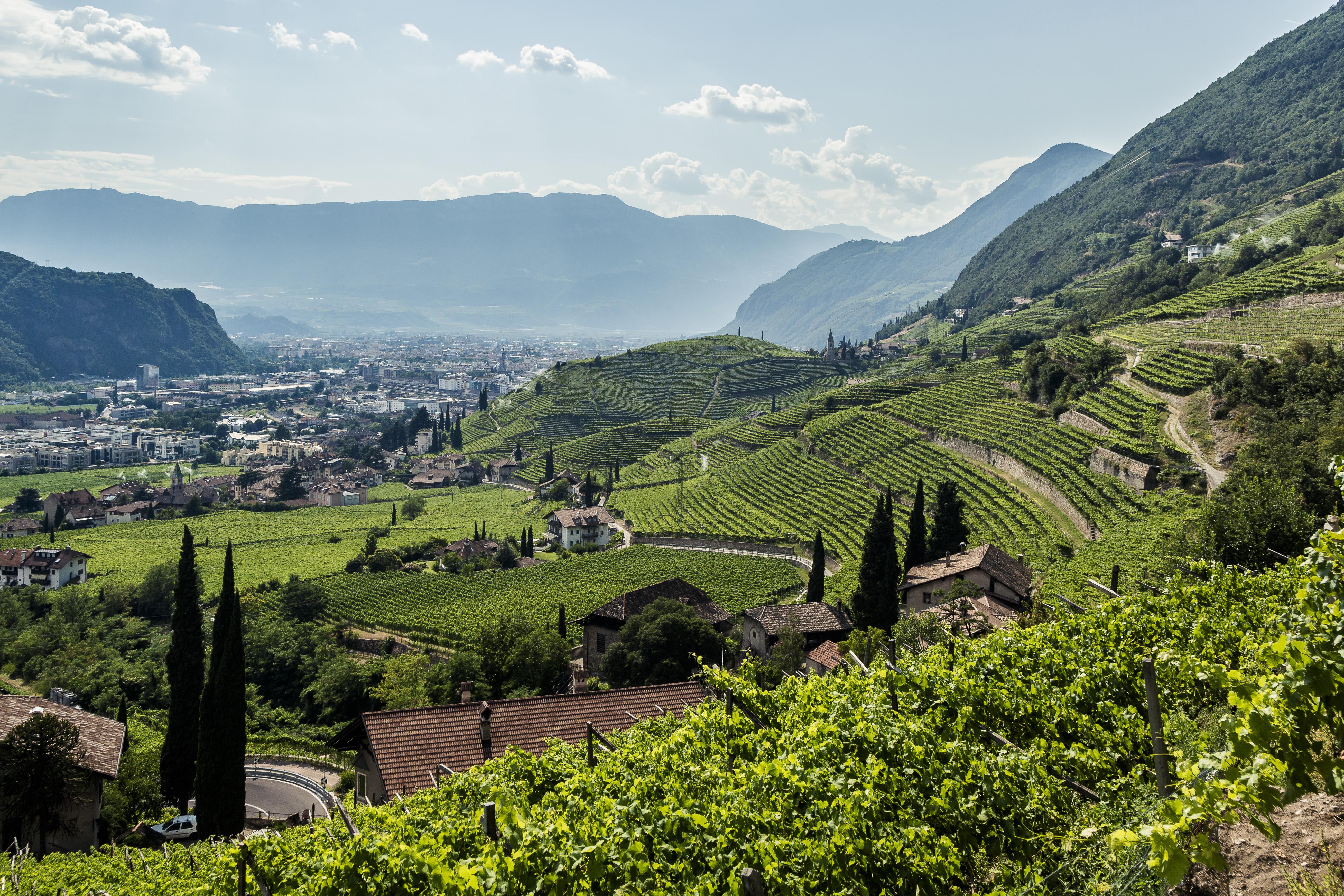 Widok na Bolzano/Bozen z otaczających miasto zielonych wzgórz i gór (fot. IDM Südtirol / Florian Andergassen)