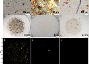 Cząstki mikroplastiku wykryte w badanych próbkach śniegu
