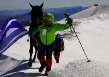Konie i jeźdźcy w trakcie podejścia na Elbrus (fot. Архыз 24)