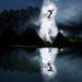 Kategoria Emerging by Red Bull Photography: Jean-Baptiste Liautard (Francja) dołączył do elitarnej ligi fotografów za sprawą lustrzanego odbicia Jeremy'ego Berthiera uchwyconego w locie.