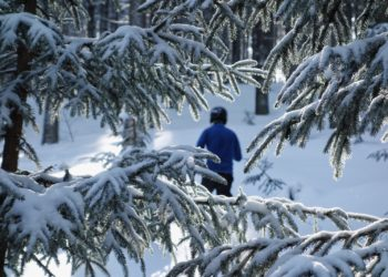 Skitourowe Shinrin-yoku pod Rysianką (fot. outdoormagazyn.pl)