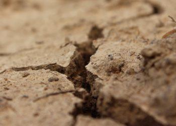 Nawalne deszcze a susza. Czy Polsce w dalszym ciągu zagraża susza? (fot. mat. prasowe)