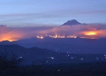 Pożar pod Kilimandżaro (fot. thecitizen.co.tz)