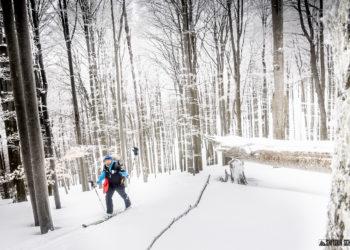 Zdj. Mateusz Mróz / Skitour School