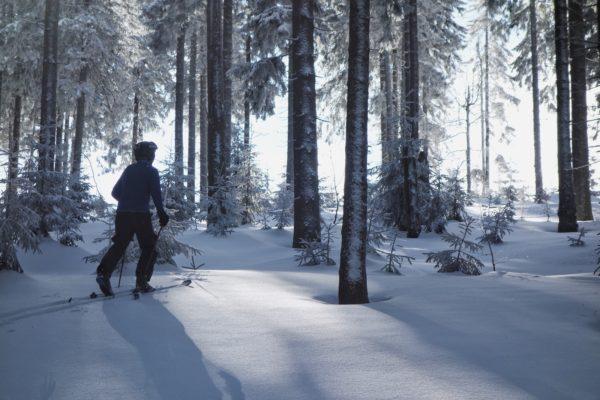 wycieczki skitourowe