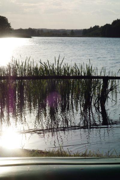 Spływy kajakowe Wda
